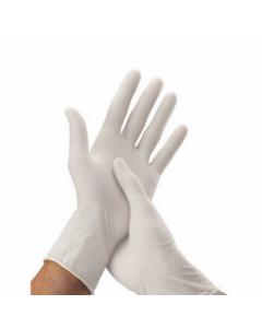 SHC - SG65 - Surgical Gloves, Sterile - Powdered - Size 6.5 Ulma Pp
